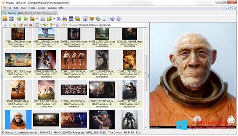 Capture d'écran XnView pour Windows 8.1