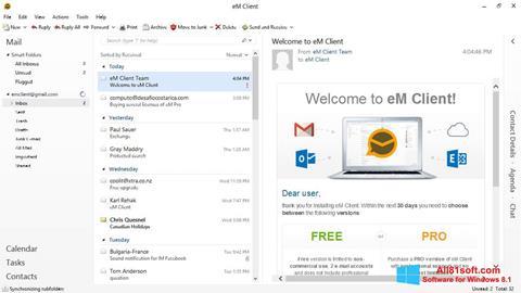 Capture d'écran eM Client pour Windows 8.1