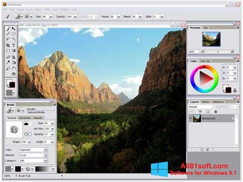 Capture d'écran Artweaver pour Windows 8.1