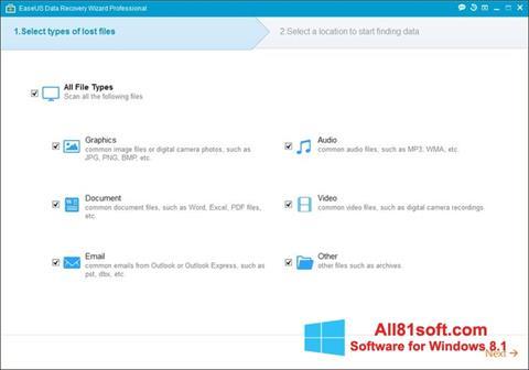 Capture d'écran EaseUS Data Recovery Wizard pour Windows 8.1