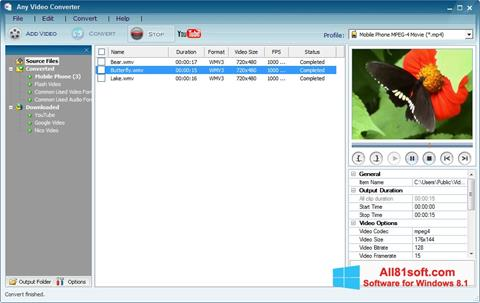 Capture d'écran Any Video Converter pour Windows 8.1