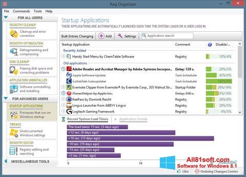 Capture d'écran Reg Organizer pour Windows 8.1
