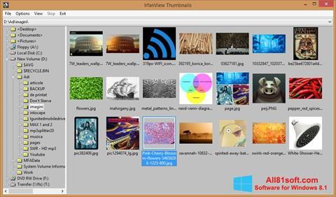 Capture d'écran IrfanView pour Windows 8.1