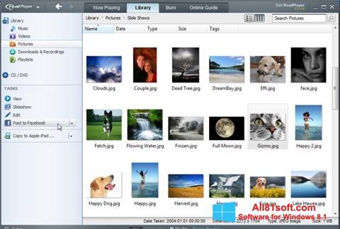 Capture d'écran RealPlayer pour Windows 8.1